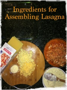 Take all the ingredients to start assembling lasagna.