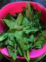Take the spinach and clean with water several times to get rid of the sand and dirt.