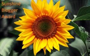 sunflower-pics-15